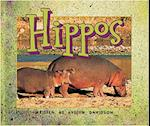 Hippos (Level 9) (Storysteps)