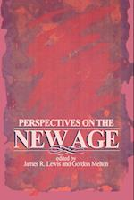 Perspectives on the New Age (Suny Series Religious Studies)