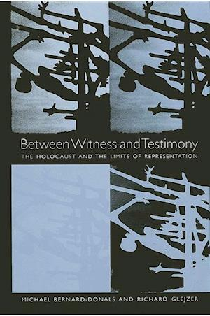 Between Witness and Testimony