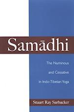 Samadhi (S U N Y SERIES IN RELIGIOUS STUDIES)