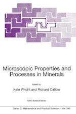 Microscopic Properties and Processes in Minerals (NATO Science Series C, nr. 543)