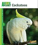 Cockatoos (Animal Planetr Pet Care Library)