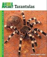 Tarantulas (Animal Planet Pet Care Library)