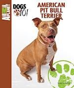 American Pit Bull Terrier (Animal Planet Dogs 101)