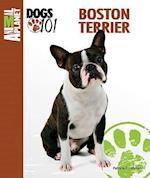 Boston Terrier (Animal Planet Dogs 101)