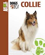 Collie (Animal Planet Dogs 101)