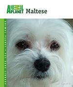 Maltese (Animal Planet Pet Care Library)