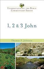 1, 2 & 3 John (NEW INTERNATIONAL BIBLICAL COMMENTARY)