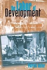 The Labor of Development