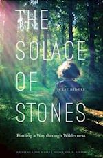 The Solace of Stones (AMERICAN LIVES)