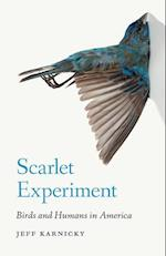 Scarlet Experiment