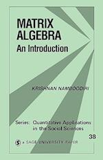 Matrix Algebra (QUANTITATIVE APPLICATIONS IN THE SOCIAL SCIENCES, nr. 38)