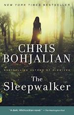 The Sleepwalker (Vintage Contemporaries)