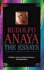 The Essays (Chicana & Chicano Visions Of The Americas, nr. 7)