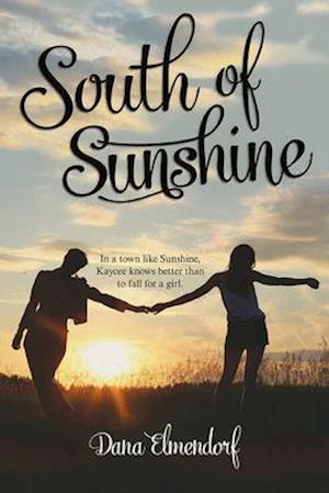 Bog, paperback South of Sunshine af Dana Elmendorf