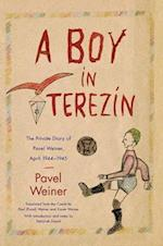 A Boy in Terezin