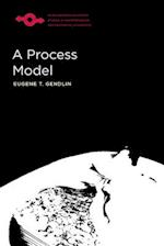 A Process Model (Studies in Phenomenology and Existential Philosophy Hardcov)