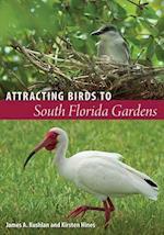Attracting Birds to South Florida Gardens