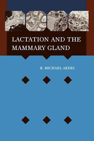 Bog hardback Lactation and the Mammary Gland af R Michael Akers