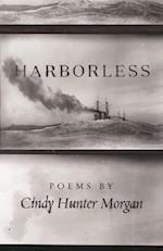 Harborless (Made in Michigan Writers)