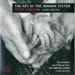 The Art of the Immune System