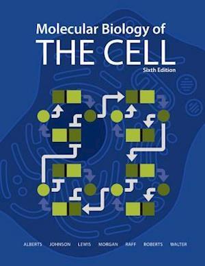 Bog paperback Molecular Biology of the Cell af Bruce Alberts