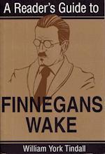 A Reader's Guide to Finnegans Wake (Irish Studies)