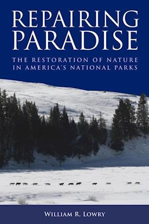 Repairing Paradise af William R Lowry