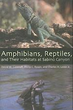 Amphibians, Reptiles, and Their Habitats at Sabino Canyon (The Southwest Center)