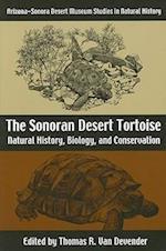 The Sonoran Desert Tortoise
