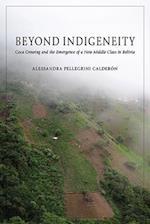 Beyond Indigeneity