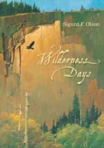 Wilderness Days (Fesler-Lampert Minnesota Heritage Book)
