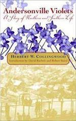 Andersonville Violets af Herbert Collingwood