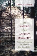 The Nature of an Ancient Maya City af Thomas H. Guderjan