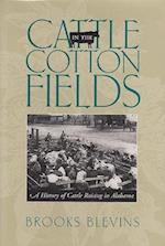Cattle in the Cotton Fields