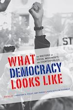 What Democracy Looks Like (Rhetoric, Culture, and Social Critique)