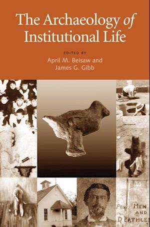 Archaeology of Institutional Life