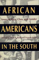 African Americans in the South (SOUTHERN ANTHROPOLOGICAL SOCIETY PROCEEDINGS, nr. 25)