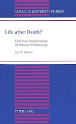 Life After Death? (American University Studies, nr. 137)