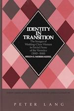 Identity in Transition (NEW STUDIES IN AESTHETICS, nr. 15)