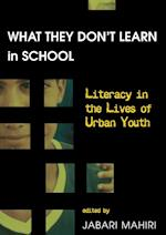 What They Don't Learn in School (New Literacies and Digital Epistemologies, nr. 2)
