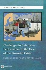 Challenges to Enterprise Performance in the Face of the Financial Crisis (World Bank Studies)