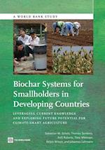 Biochar Systems for Smallholders in Developing Countries af Sebastian Scholz, Kelli Roberts, Thomas Sembres