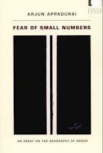 Fear of Small Numbers (Public Planet Books)