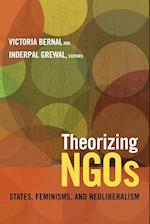 Theorizing NGOs (Next Wave: New Directions in Women's Studies)