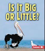 Is It Big or Little? (First Step Nonfiction)