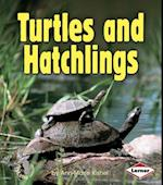 Turtles and Hatchlings (First Step Nonfiction Animal Families)