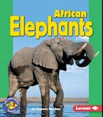African Elephants (Pull Ahead Books (Paperback))