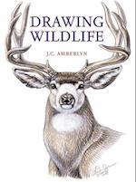 Drawing Wildlife af J C Amberlyn