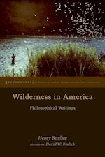 Wilderness in America (Groundworks Ecological Issues in Philosophy and Theology)